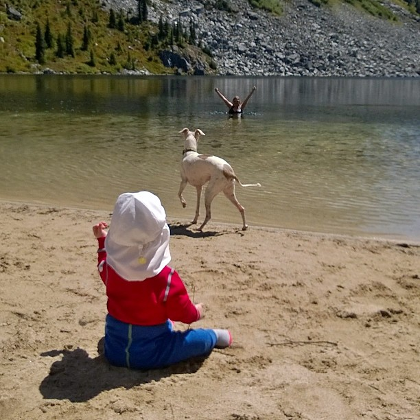Swimming  considering rescue  eating sand respectively