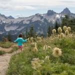 Marmot Mountain Magic